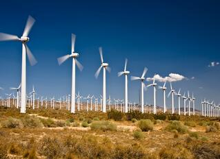 Windmill Farm.jpg